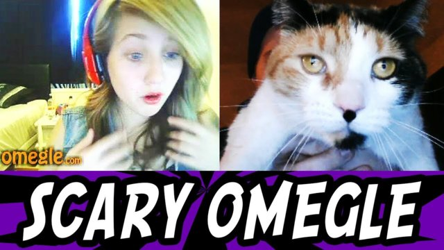 Scary Prank on Omegle 10 - Funny Cat Scare