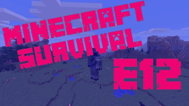Minecraft Survival - A Whole New World - E12