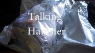 talking hamster review