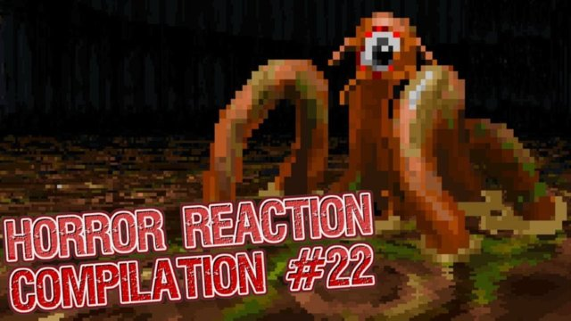 Horror Reaction Compilation 22