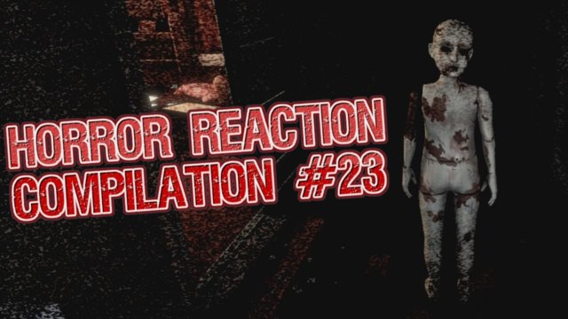 Horror Reaction Compilation 23