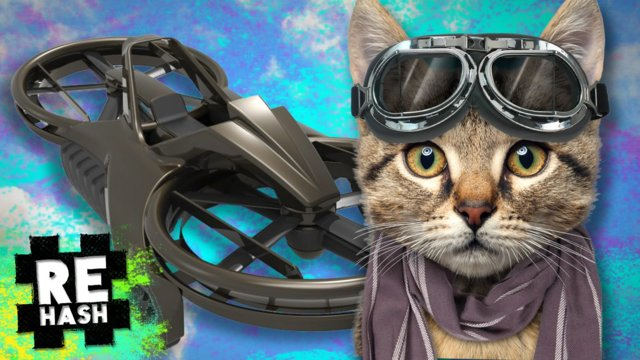Flying cats, U.S. Military to use REAL hoverbikes #Rehash #FreedomFamily